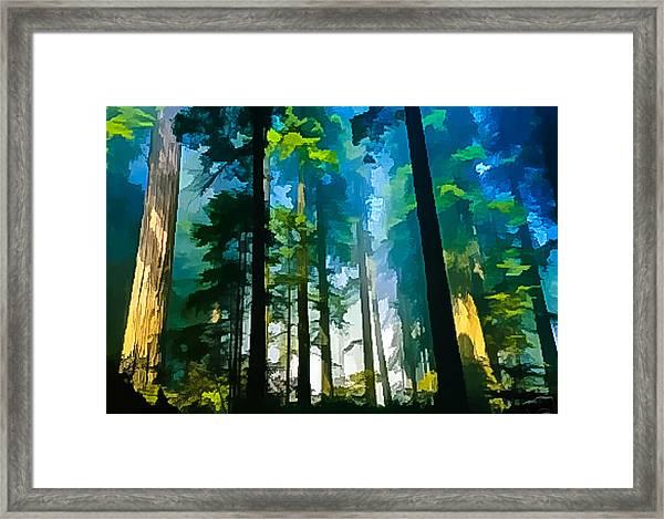 Never Never Land Framed Print