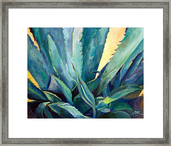 New Blue Agave Framed Print