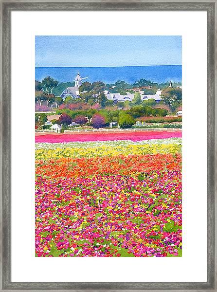 New Carlsbad Flower Fields Framed Print