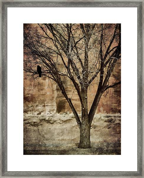 New Mexico Winter Framed Print