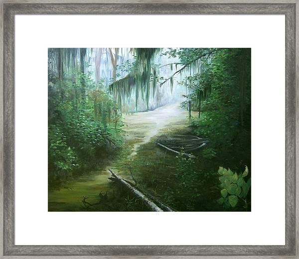 New Orleans Swamp Framed Print by Susan Moore