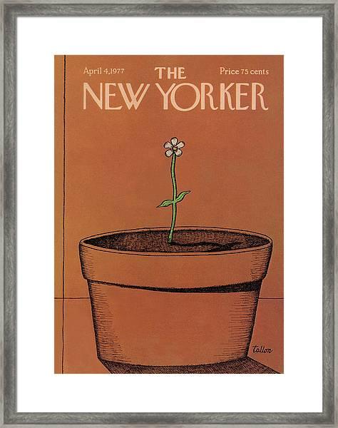 New Yorker April 4th, 1977 Framed Print