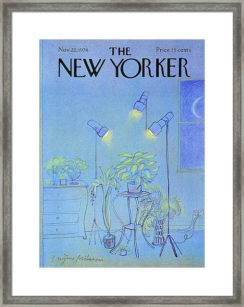 New Yorker November 22nd 1976 Framed Print by Eugene Mihaesco