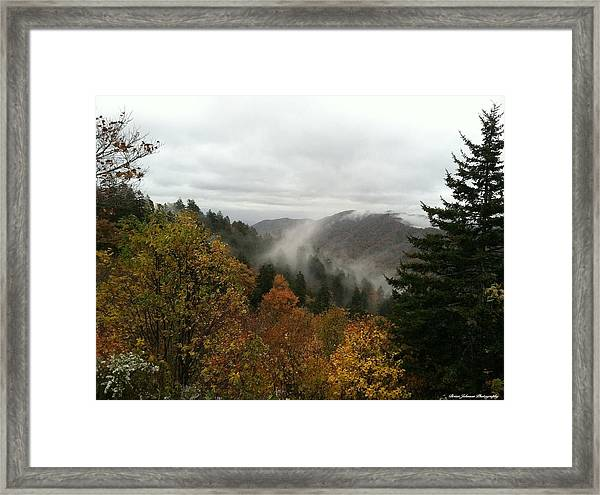 Newfound Gap Overlook Tennessee Framed Print