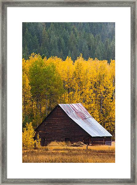 Next To Nature Framed Print