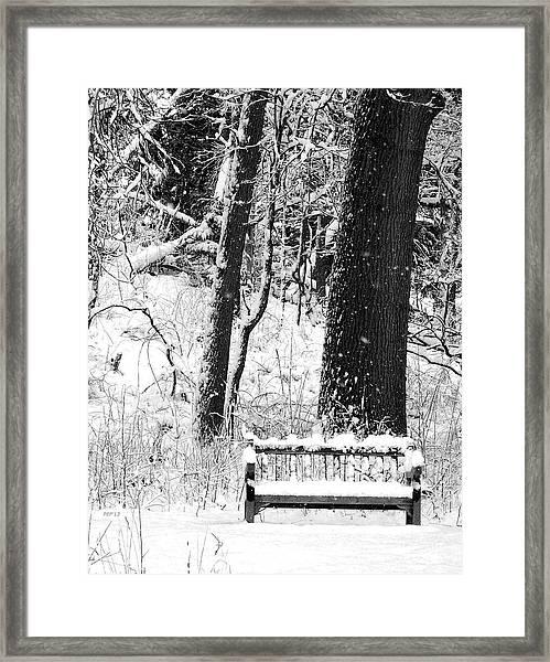 Nichols Arboretum Framed Print