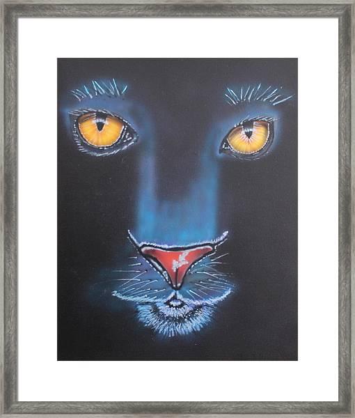 Night Eyes Framed Print