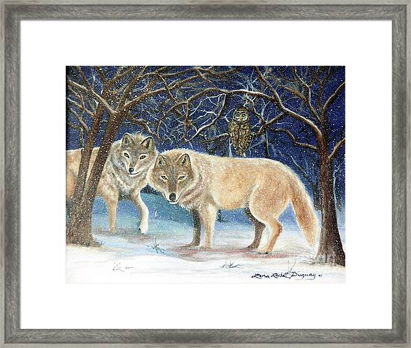 Night Life In The Forest Framed Print