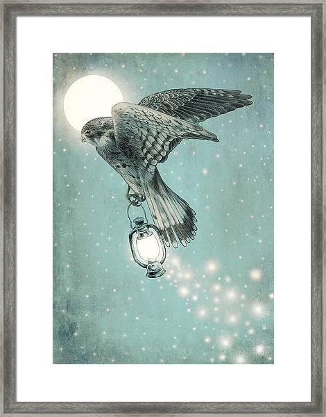 Nighthawk Framed Print