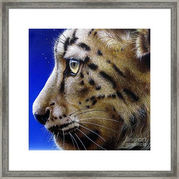 Nina The Snow Leopard Framed Print
