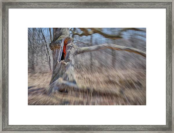 No Escape Framed Print