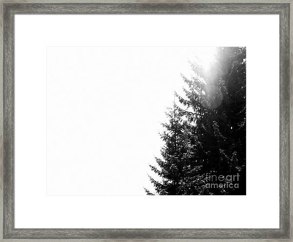 Noiseless Framed Print