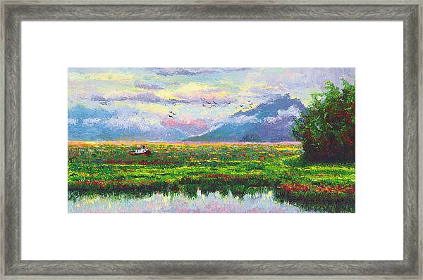 Nomad - Alaska Landscape With Joe Redington's Boat In Knik Alaska Framed Print