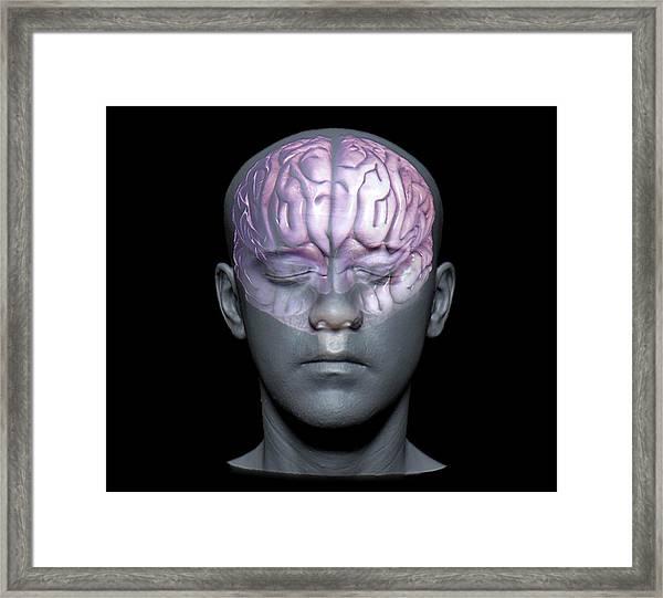 Normal Brain Framed Print by Zephyr
