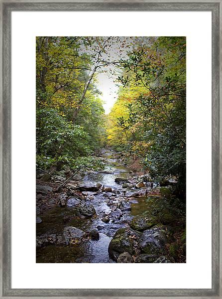 North Carolina Typical Framed Print