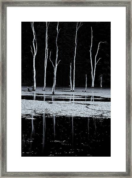 North Pond Twilight Framed Print