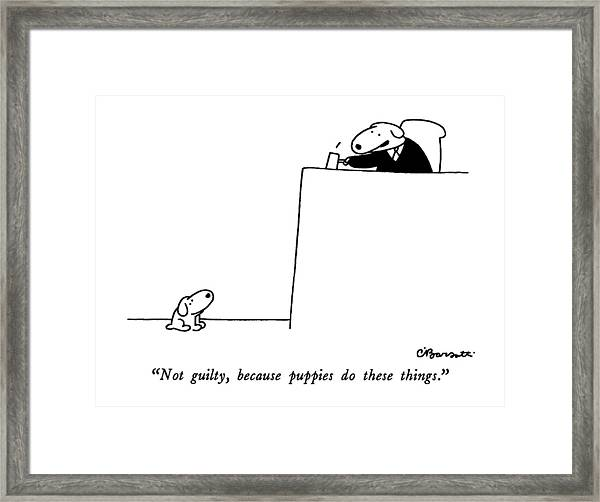 Not Guilty, Because Puppies Do These Things Framed Print