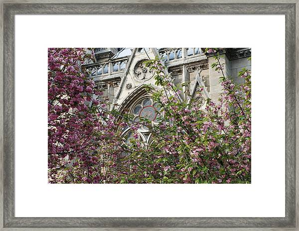 Notre Dame In April Framed Print