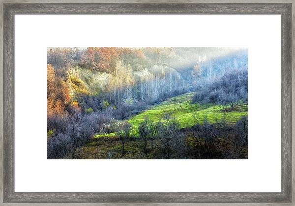 November Colors Framed Print