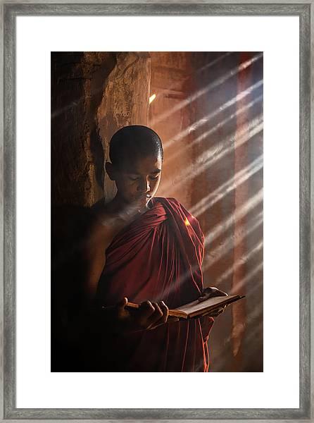 Novice Framed Print by Amnon Eichelberg