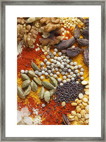 Nuts Pulses And Spices Framed Print
