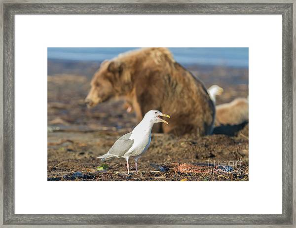 Obstructed View Framed Print