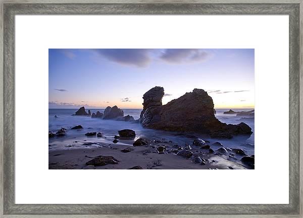 Ocean T Rex Framed Print