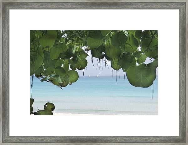 Ocen View Framed Print