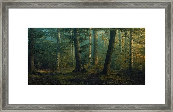 October Colors Framed Print