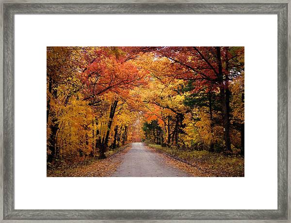October Road Framed Print