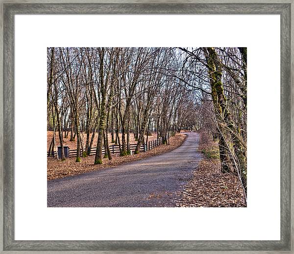 Framed Print featuring the photograph Off Rattle Snake Road by William Havle