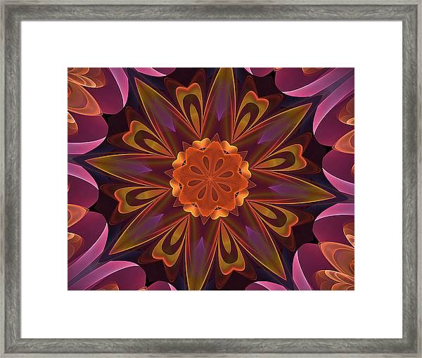 Oh La La Kaleidoscope Framed Print