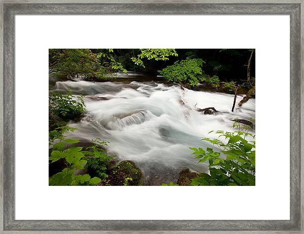 Oirase Stream Framed Print
