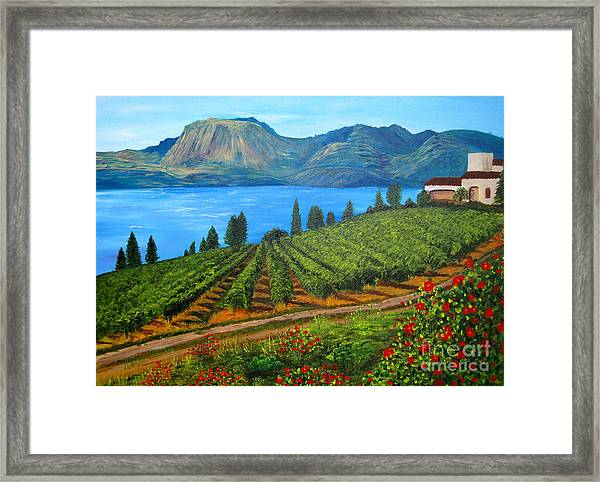 Okanagan Vineyard Framed Print