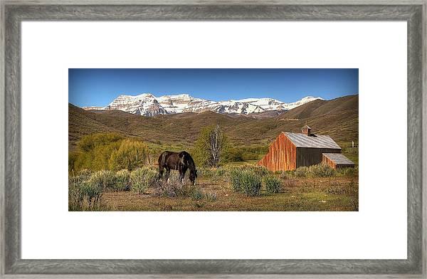 Ol Tates Barn Framed Print