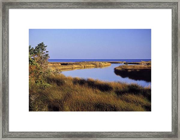 Old Hammock Creek Framed Print