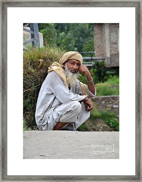Old Man Carrying Fodder Swat Valley Kpk Pakistan Framed Print