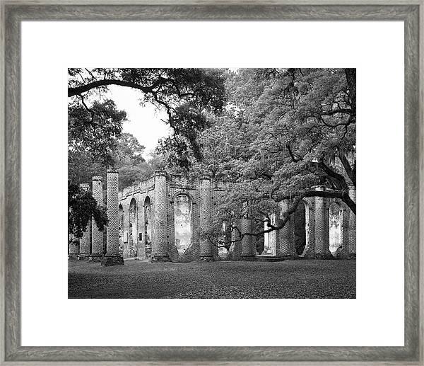 Old Sheldon Church - Black And White Framed Print