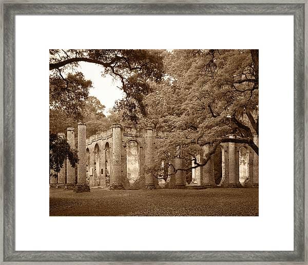 Old Sheldon Church - Sepia Framed Print