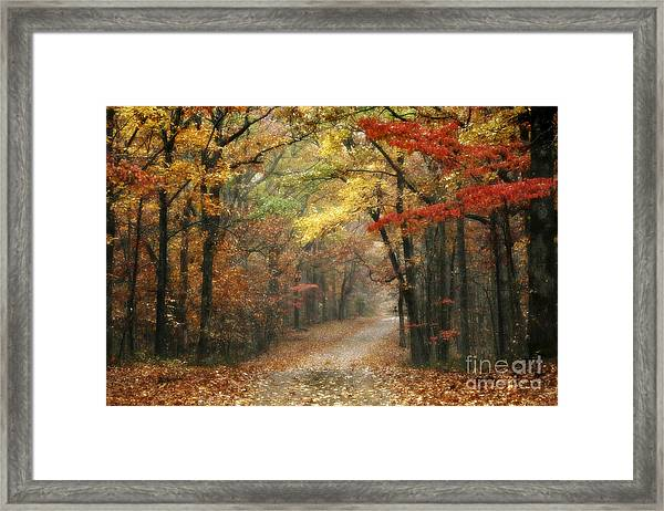 Old Trace Fall - Along The Natchez Trace In Tennessee Framed Print
