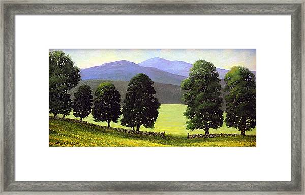 Old Wall Old Maples Framed Print