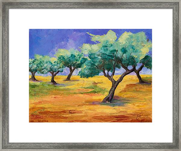 Framed Print featuring the painting Olive Trees Grove by Elise Palmigiani