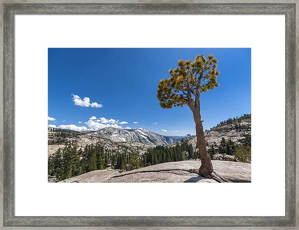 Olmsted Point Yosemite Framed Print