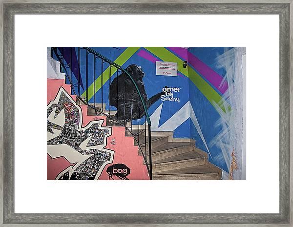 Omer Tdk Sdeng Framed Print