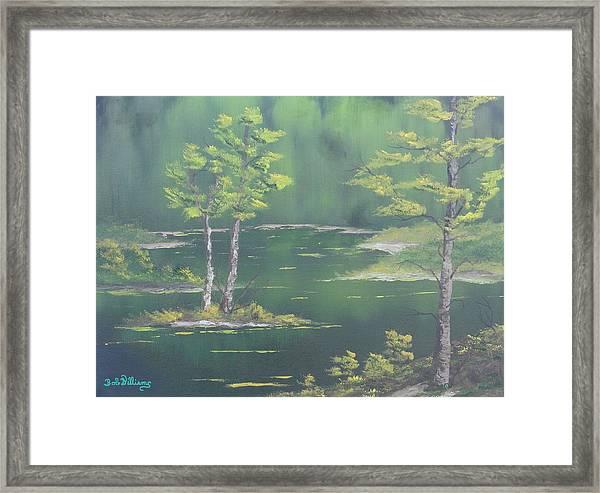 On Emerald Pond Framed Print