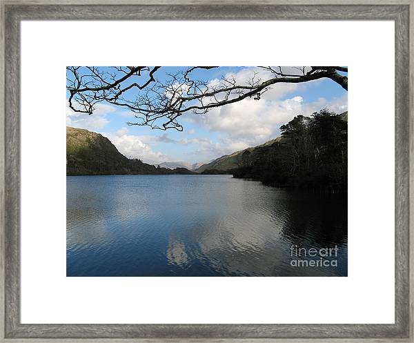 On The Drive To Connomarra Framed Print