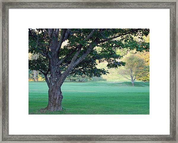 On The Golf Course Framed Print by Gloria Merritt