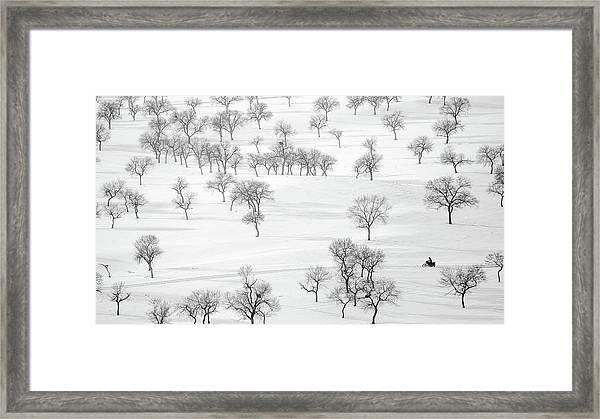 On The Way Framed Print by Bingo Z
