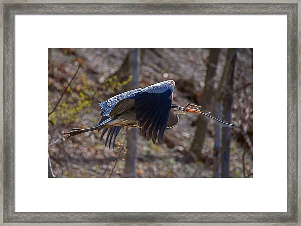 One At A Time Framed Print