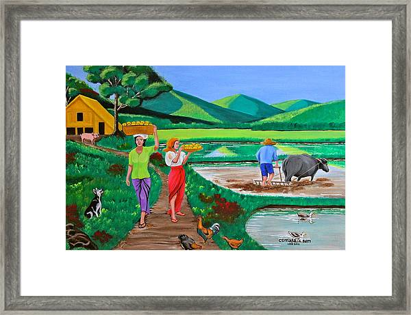 One Beautiful Morning In The Farm Framed Print